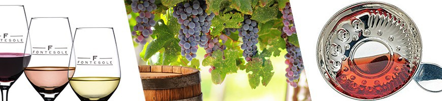 Oenologie, accessoires autour du vin, dégustation du vin